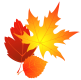 Transparent_Fall_Leaves_Clipart (1)